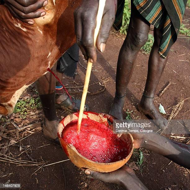 ethiopian tribes, mursi - dietmar temps ストックフォトと画像
