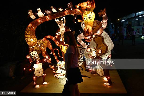 A ethnic Chinese girl walks pass an animated lantern at the Fo Guang Shan Ding Zen Temple to celebrate the Lantern Festival on the last day of...