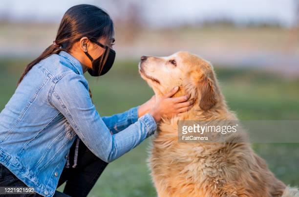 raza hembra acariciadora perro afuera mientras usa máscara protectora - adopción fotografías e imágenes de stock