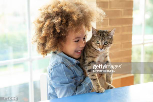 ethnic kid girl playing with cat - feline stock pictures, royalty-free photos & images