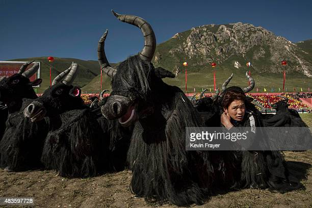 Ethnic Tibetans dressed in Yak costumes wait to perform on July 24, 2015 at a local government sponsored festival on the Tibetan Plateau in Yushu...