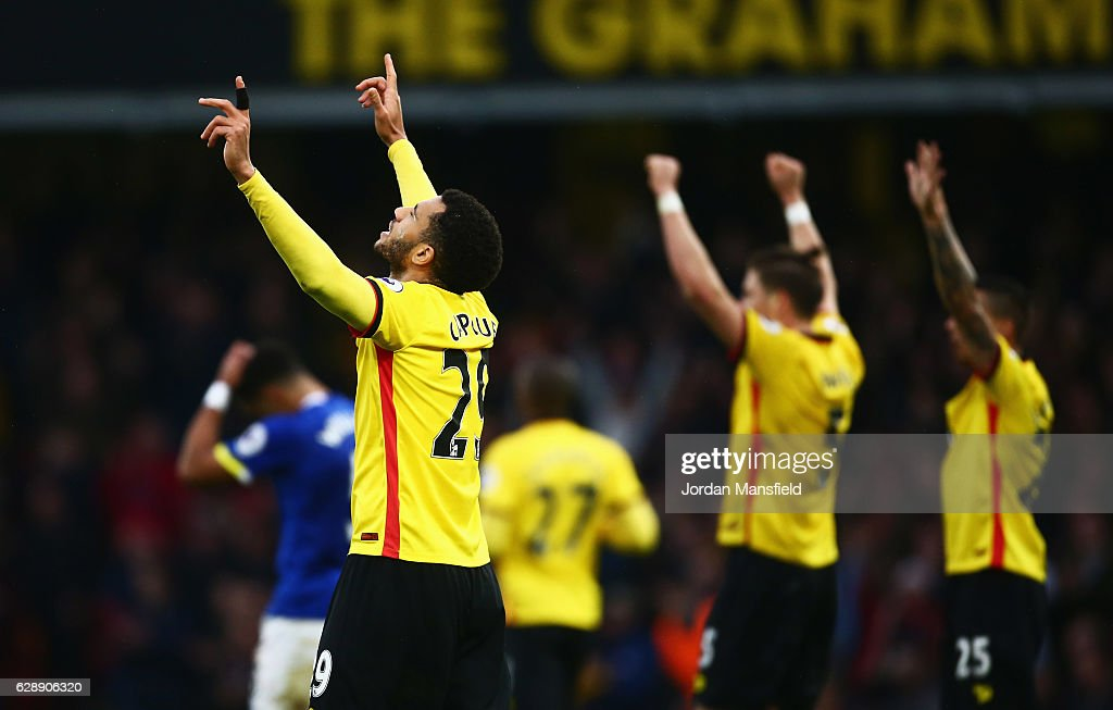 Etienne Capoue of Watford (29) and team mates celebrate victory after the Premier League match between Watford and Everton at Vicarage Road on December 10, 2016 in Watford, England.