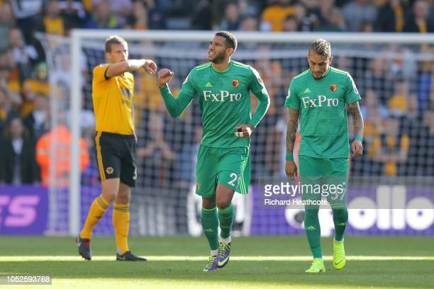 Etienne Capoue of Watford celebrates after scoring his team's first goal during the Premier League match between Wolverhampton Wanderers and Watford...