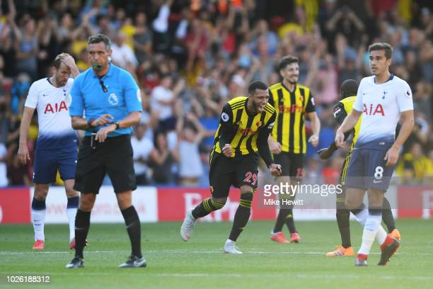 Etienne Capoue of Watford celebrates as referee Andre Marriner blows the full time whistle during the Premier League match between Watford FC and...