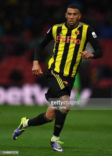 Etienne Capoue of Watford during the Premier League match between Watford FC and AFC Bournemouth at Vicarage Road on October 6 2018 in Watford United...