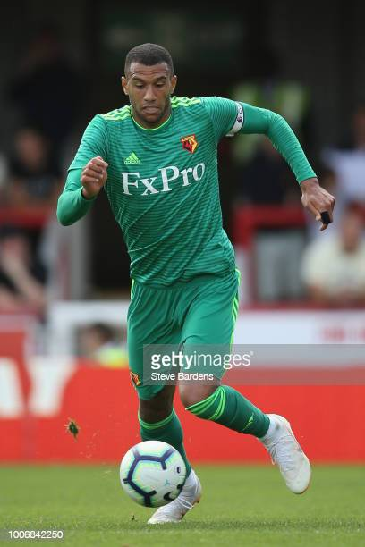 Etienne Capoue of Watford in action during the preseason match between Brentford and Watford at Griffin Park on July 28 2018 in Brentford England