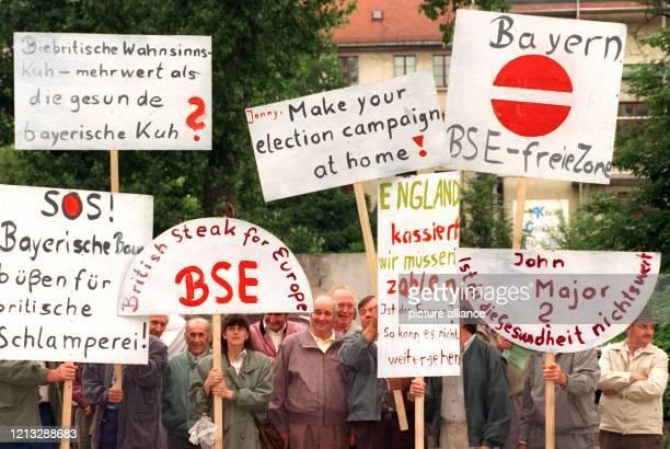 Etwa zwei Dutzend Bauern demonstrieren am 25.6.1996 mit großen Plakaten vor dem britischen Konsulat in München gegen die Lockerung des Exportverbotes...