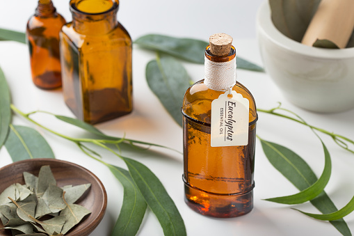 Eucalyptus essential oil 1027314968