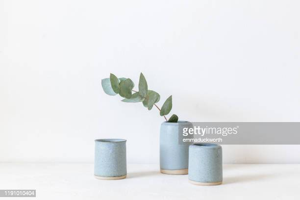 eucalyptus in a ceramic vase - pottery stock pictures, royalty-free photos & images