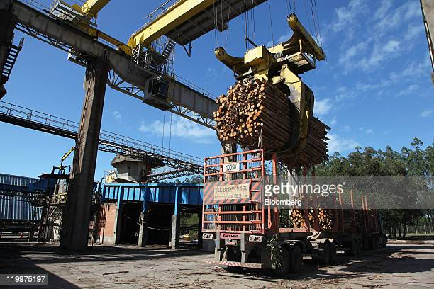 Eucalyptus is moved from a truck to a chipper the first step in turning wood into cellulose at the Fibria Celulose SA plant in Aracruz Espirito Santo...