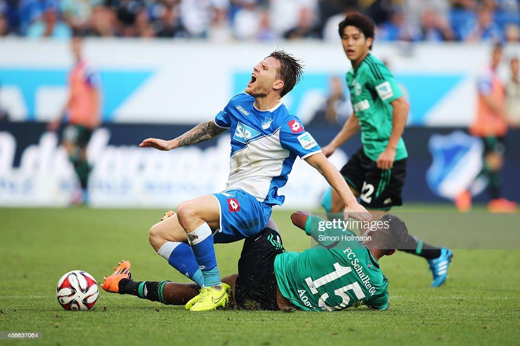 Eugen Polanski of Hoffenheim is challenged by Dennis Aogo of Schalke during the Bundesliga match between 1899 Hoffenheim and FC Schalke 04 at Wirsol Rhein-Neckar-Arena on October 4, 2014 in Sinsheim, Germany.