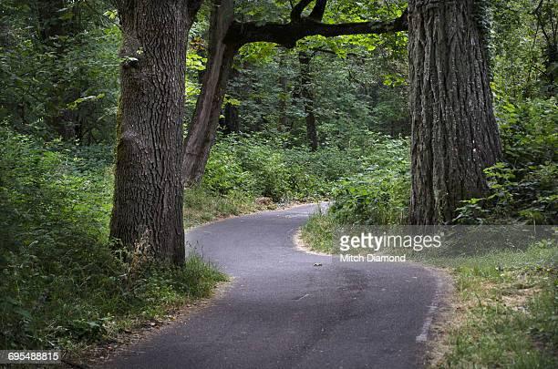 Eugene Bike Path