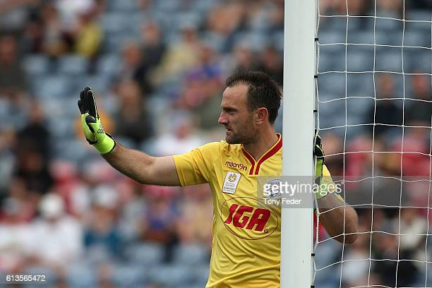 Eugene Galekovic of Adelaide during the round one ALeague match between the Newcastle Jets and Adelaide United at Hunter Stadium on October 9 2016 in...