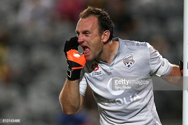 Eugene Galekovic of Adelaide shouts at team mates during the round 19 ALeague match between the Central Coast Mariners and Adelaide United at Central...