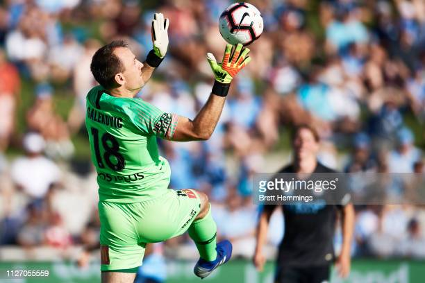 Eugene Galekovic of Melbourne City makes a save during the round 17 ALeague match between Sydney FC and Melbourne City at WIN Jubilee Stadium on...