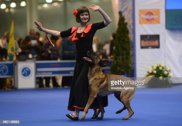 Eurasia Dog Show 2014 is organized with the contribution of Federation Cynologique Internationale in Moscow Russia on March 23 201412 thousands dogs...