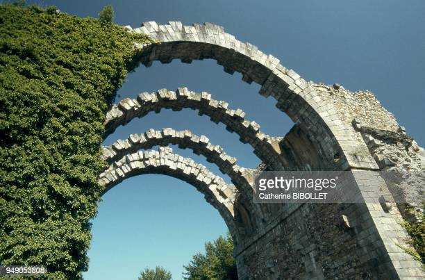 the ruins of the bridgeaqueduct of the Eure canal in the gardens of the castle of Maintenon Intended to divert the river's waters for the fountains...