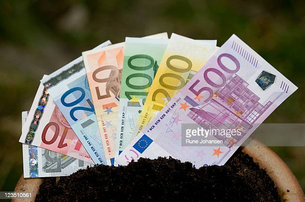 Euro bank notes in a pot filled with soil