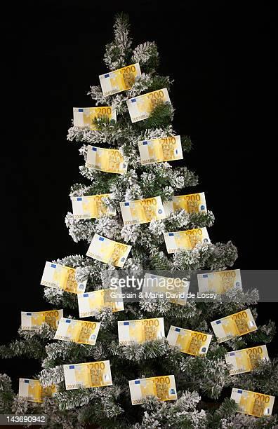 Euro bills on Christmas tree