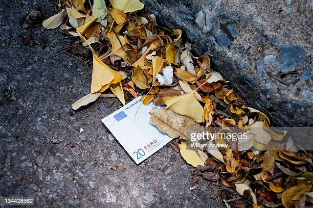 Euro in the gutter, covered by leaves