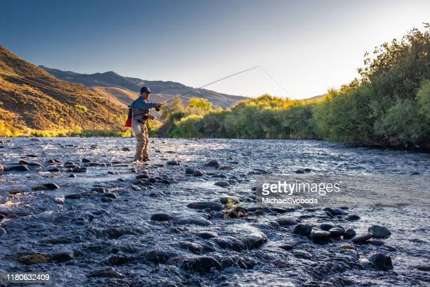 euro nymphing fisherman - fly casting stock pictures, royalty-free photos & images