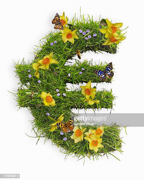 Euro symbol with flowers and grass