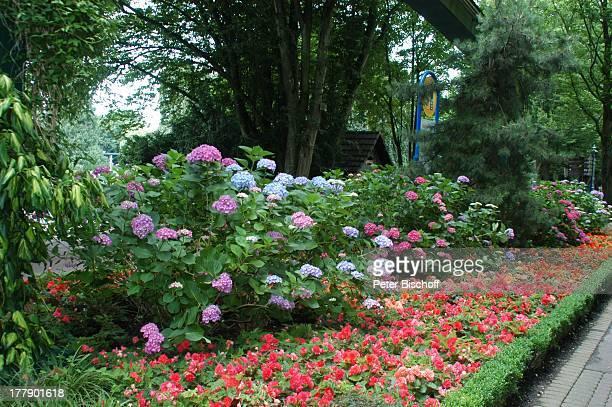 Europa Park 30jähriges Jubiläum Rust bei Freiburg BadenWürttemberg Deutschland Europa JubiläumsFeier Parkanlage ParkAnlage Blumen Pflanzen...