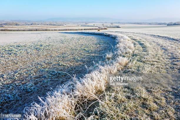 europe, france, burgundy, cote-d'or, bard les epoisses, frozen landscape with frost - côte d'or bildbanksfoton och bilder