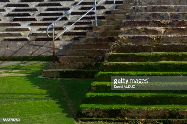 Europe, France, stairs to face at low tide Les Sables dOlonne in the Vendee. Green algae in the foreground