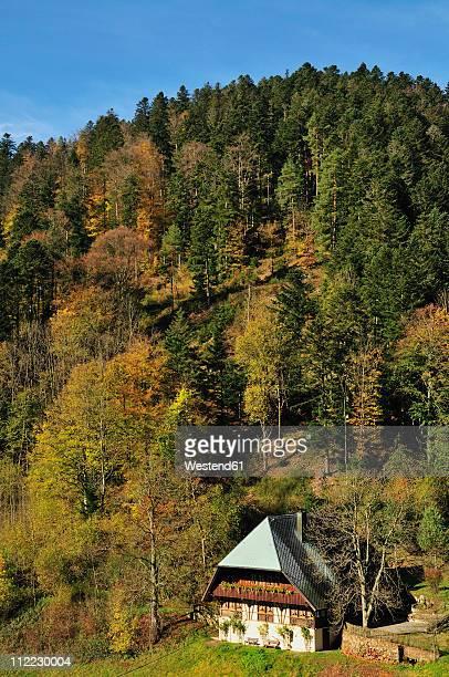 europe, germany, baden-wuerttemberg, view of house in black forest - schwarzwald stock-fotos und bilder