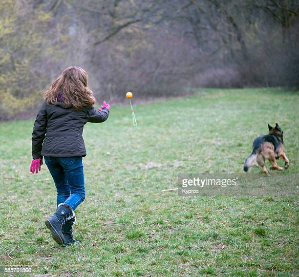 Europe, Germany, Bavaria, Munich, View Of Pet Dog Walking In German Forest With Woman Throwing Toy Playing Catch
