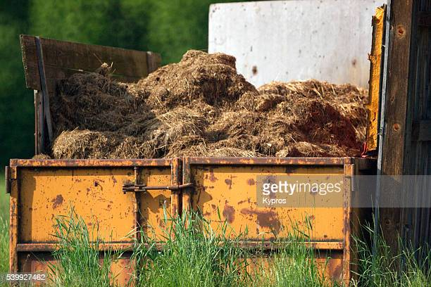 Europe, Germany, Bavaria, View Of Steel Container Filled With Manure And Old Hay