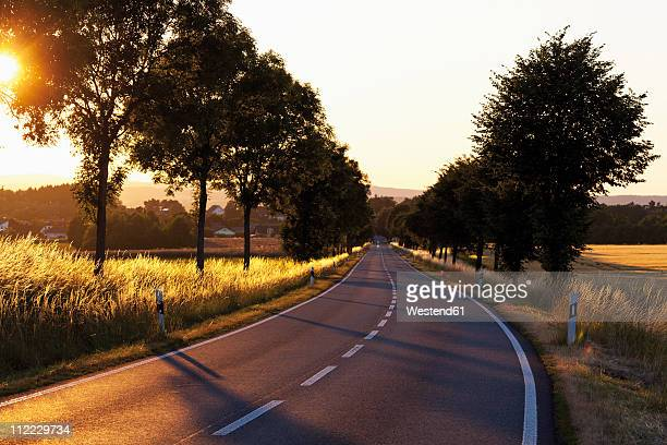 Europe, Germany, Rhineland-Palatinate, View of country road of westerwald