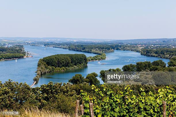 Europe, Germany, Rhineland-Palatinate, View of rhine gorge between the towns mainz and bingen