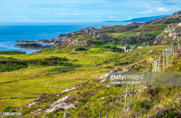 europe, great britain, scotland, hebrides, south-east of the isle of skye, coastal moor at point of sleat - hebriden inselgruppe stock-fotos und bilder
