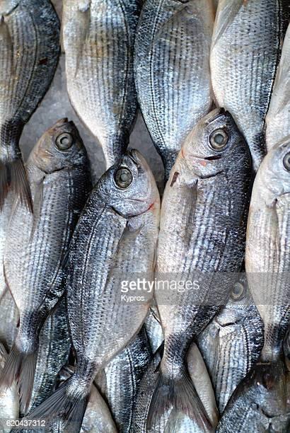 Europe, Greece, Athens, Piraeus , View Of Fishmonger Shop Selling Fish 'n