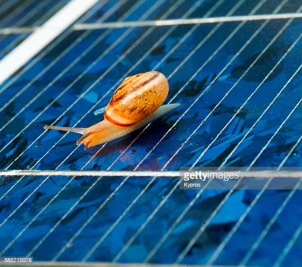 """europe, greece, view of snail on solar panel """"n - steuerpult stock-fotos und bilder"""