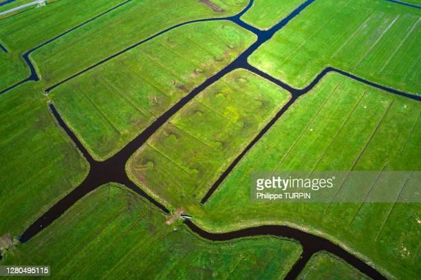 europe, nederlands, schermerhorn - 干拓地 ストックフォトと画像
