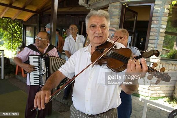 Europe Serbia Vojvodina Novi Sad Danube River Kamenjar Restaurant Musician Plays Violin