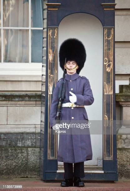 europe, uk, england, london: view of guard with rifle wearing bearskin hat standing within grounds of buckingham palace - animal skin rug stock photos and pictures