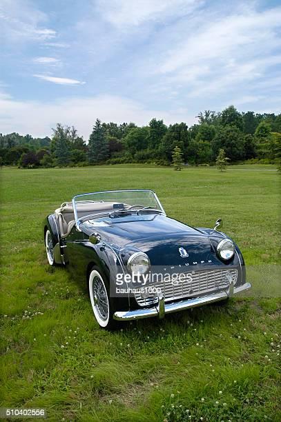 European Classic Sports Car--Green Triumph Roadster