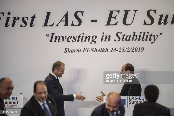 European Council President Donald Tusk shakes hands with Egyptian President Abdel Fattah alSisi during a press conference at the end of the first...