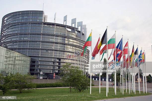 European flags at the Council of Europe Building