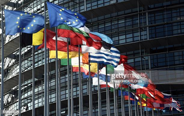 European flags fly in front of the European Parliament on June 9 2016 in Strasbourg eastern France / AFP / FREDERICK FLORIN