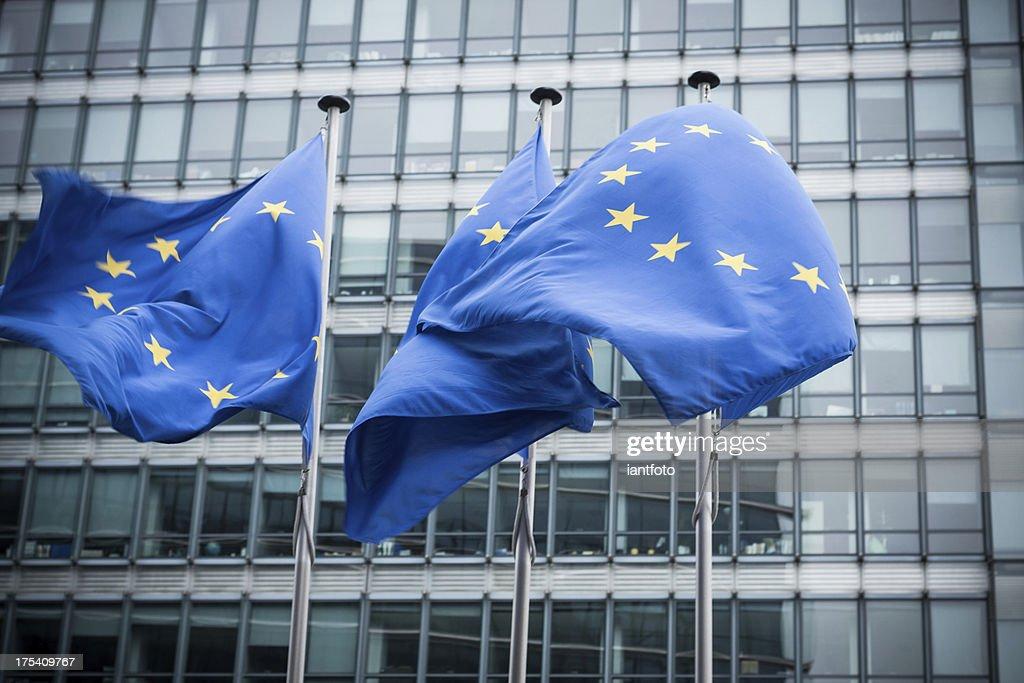 European flags. : Stock Photo