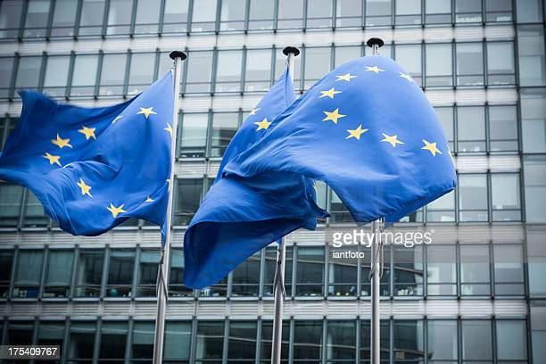european flags. - brussels capital region stock pictures, royalty-free photos & images