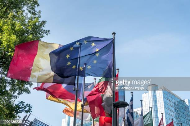 european national flags in front of european parliament building - europe stockfoto's en -beelden