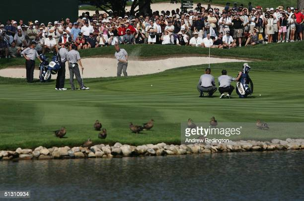 European player Darren Clarke of Northern Ireland plays a bunker shot on the 16th hole as his teammates look on during the second practice day for...