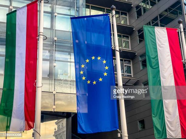 european union and hungarian flag amid a business corperate setting - hungary stock pictures, royalty-free photos & images