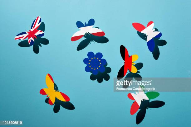 european union concept - nederlandse vlag stockfoto's en -beelden